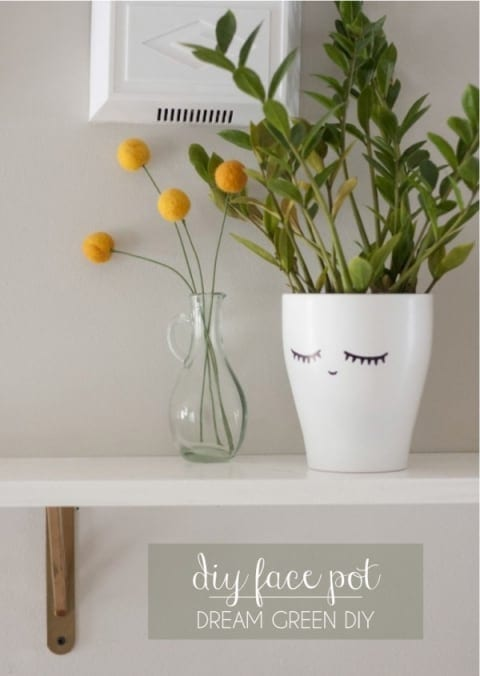 This cute little DIY sharpie craft gives some character to your potted plants.
